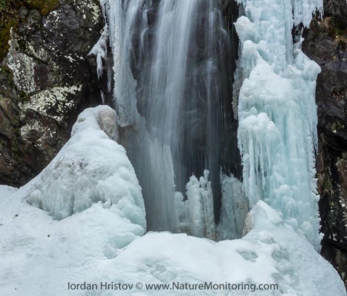 The cup of Boyana waterfall Iordan_Hristov