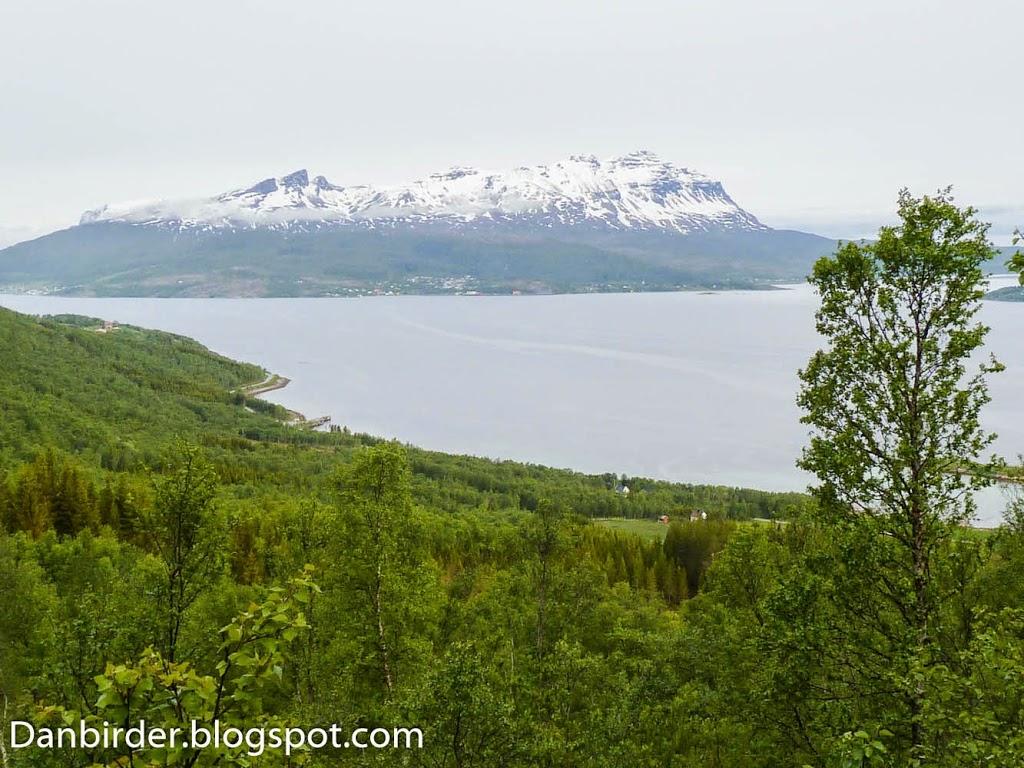 Biodiversity_survey_Norway_Iordan_Hristov-1090749