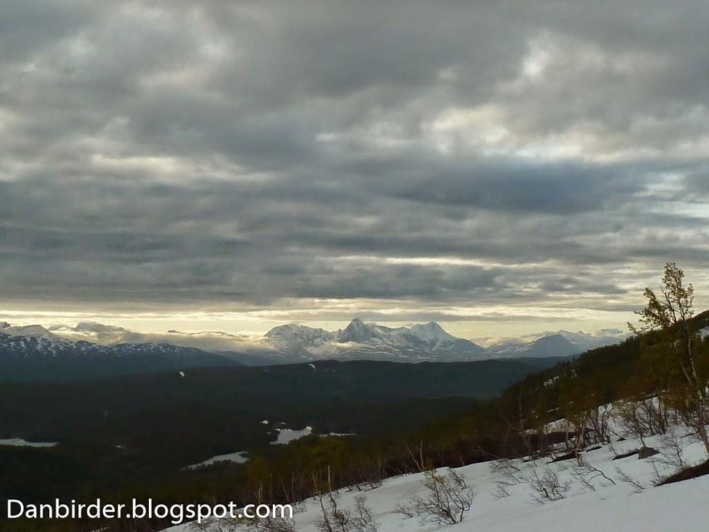 Biodiversity_survey_Norway_Iordan_Hristov-1090851