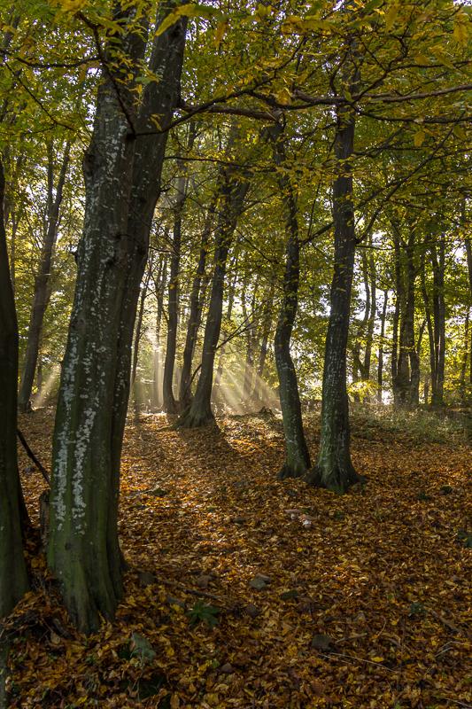 landscape_photography_Bulgaria_Iordan_Hristov_web-8363