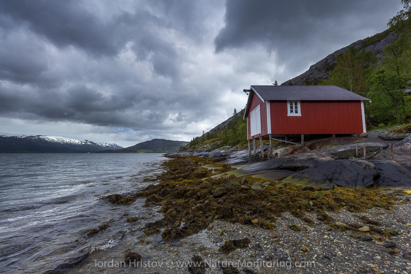 Norwegian house © Iordan Hristov