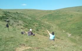 birdwatching trip in Central Balkan mountains