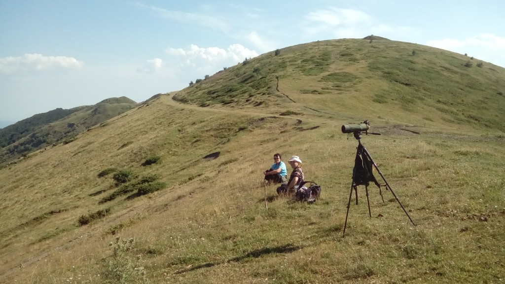birdwatching trip in Central Balkan mountains