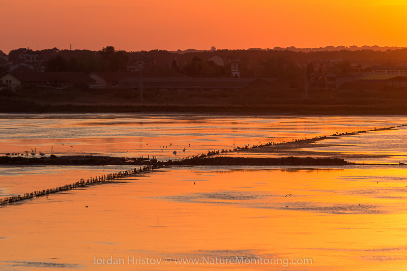 Sunset over Pomorie saltpans © Iordan Hristov