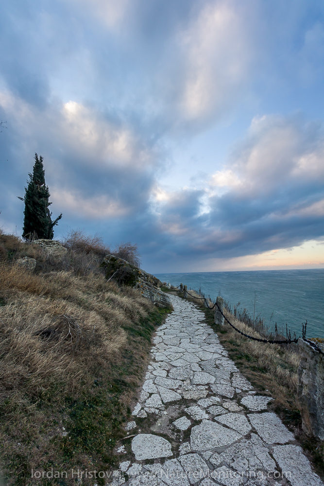 the path to the tip of the cape