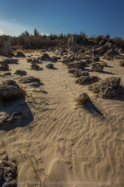Sand dunes at the stone forest