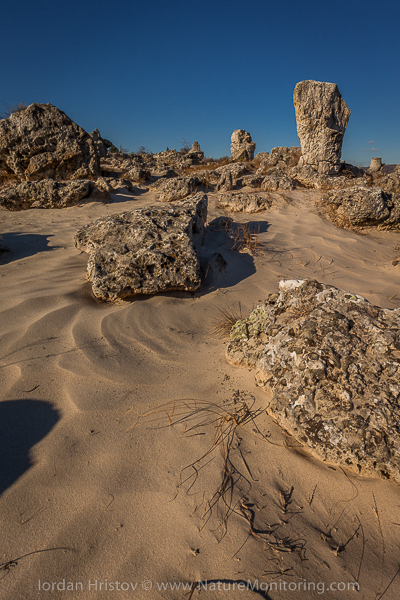 пясъчни форми