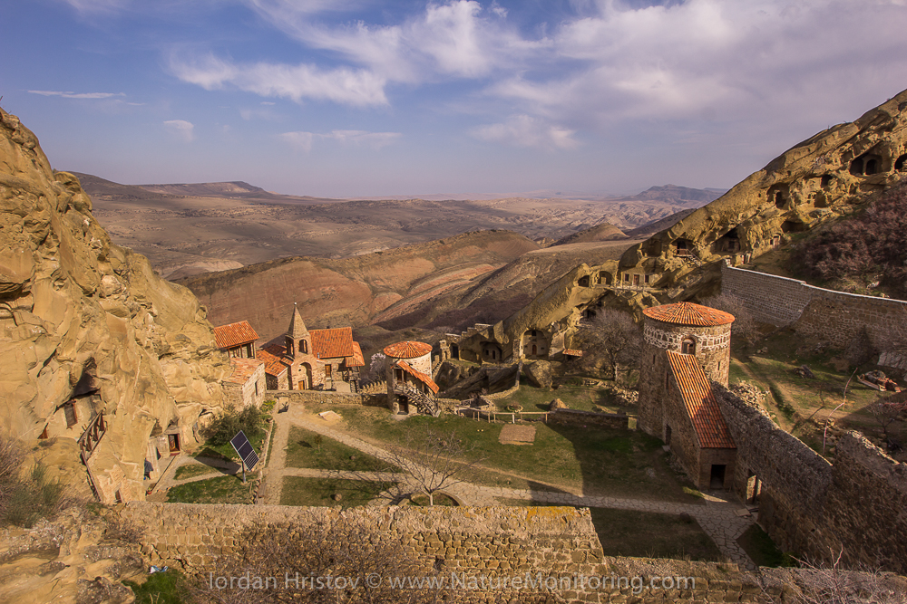 the yeard of David Gareji rock monastery