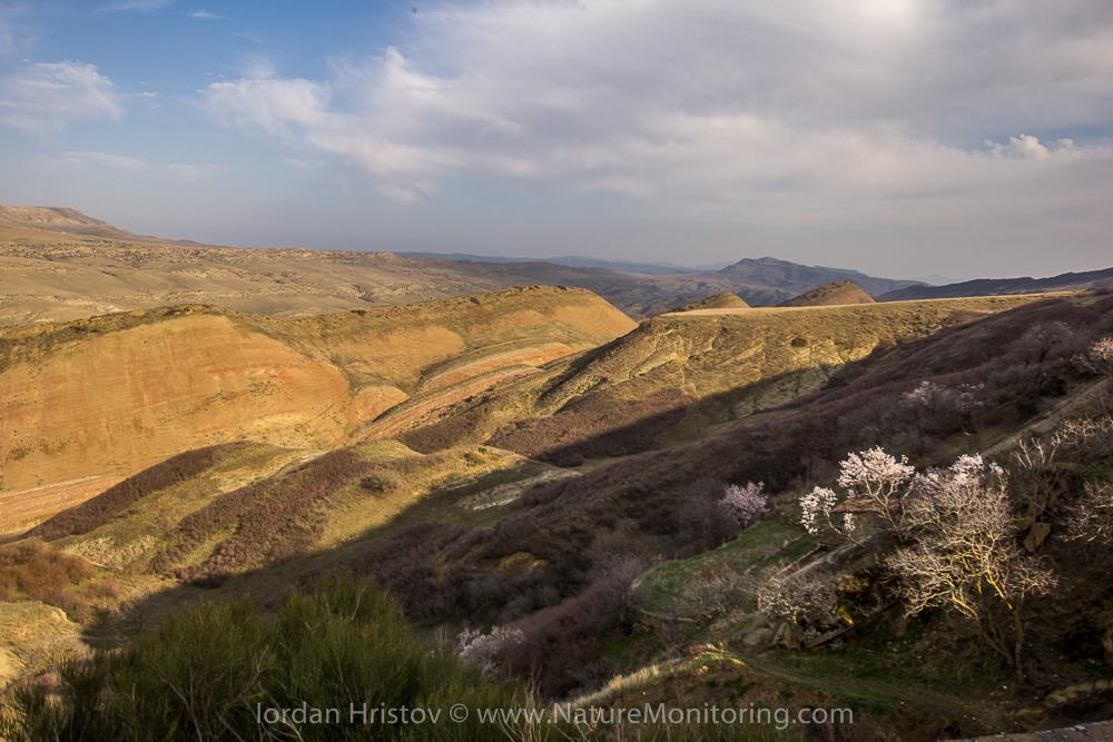 view to the steppes from David Gareji monastery © Iordan Hristov