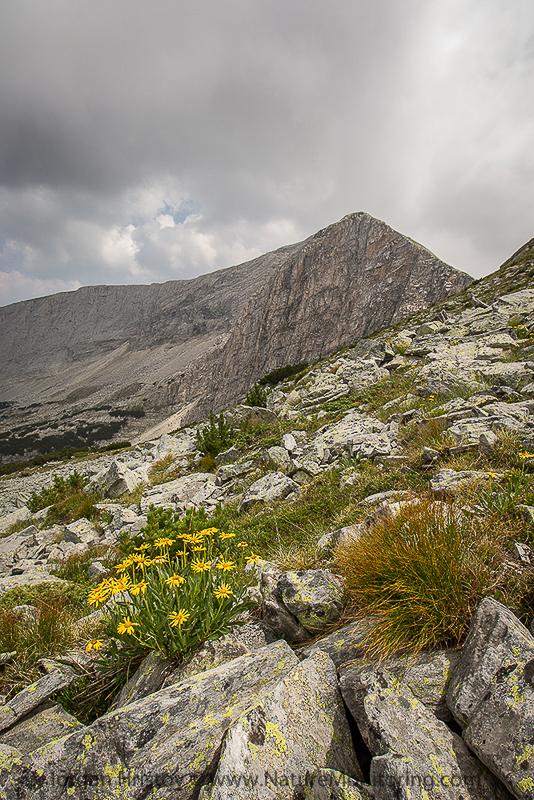 Razlozhki suhodol in Pirin mountains © Iordan Hristov